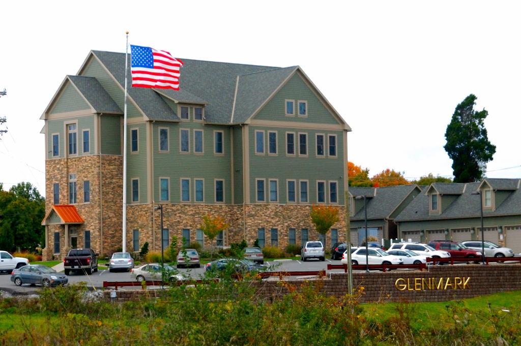 038 Glenmark Office Building 10-12-11 (2)